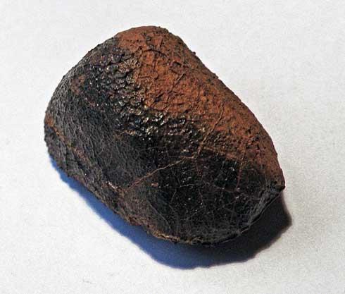 Millbillillie-stone-euc