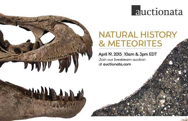 Auctionata Meteorite Auction